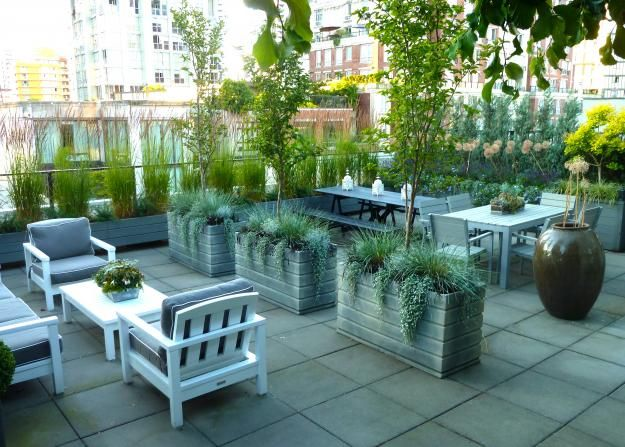 Rooftop Garden Obsession