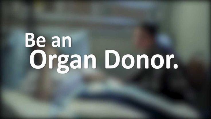 referencia diseño de campaña, documental