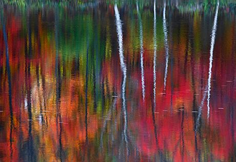 """Australian Landscape Photographer Peter Lik Sells Photo for $1 Million        Michael Zhang · Jan 13, 2011         Peter Lik, a self-taught Australian landscape photographer, has sold one of his photographs for a whopping $1 million to an anonymous private art collector. The photograph, titled """"One"""", was shot on the banks of the Androscoggin River in New Hampshire just after dawn. Only one print of the photo will ever be produced."""