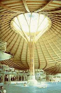 Best 25 Tree Structure Ideas On Pinterest Steel Canopy