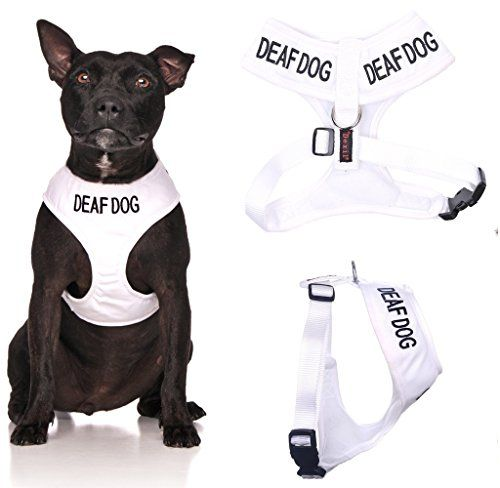 Deaf Dog White Color Coded Waterproof Padded Adjustable Medium Alert Warning Vest Dog Harness Prevents Accidents By Warning Others of Your Dog in Advance Dexil http://www.amazon.com/dp/6041026557/ref=cm_sw_r_pi_dp_ngf3wb1B0T6W4