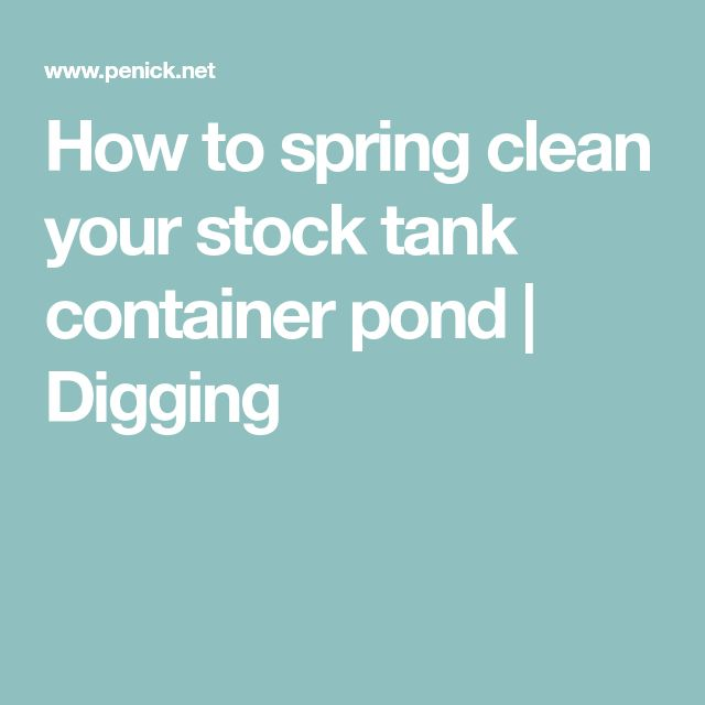 How to spring clean your stock tank container pond | Digging