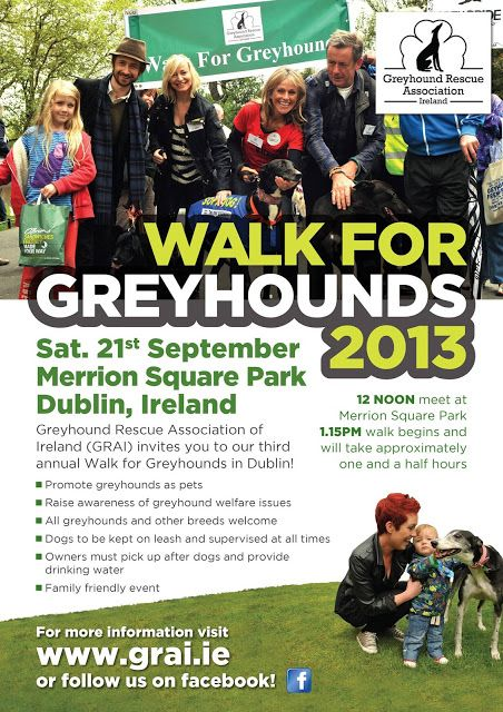 Walk for Greyhounds | A dog's paw