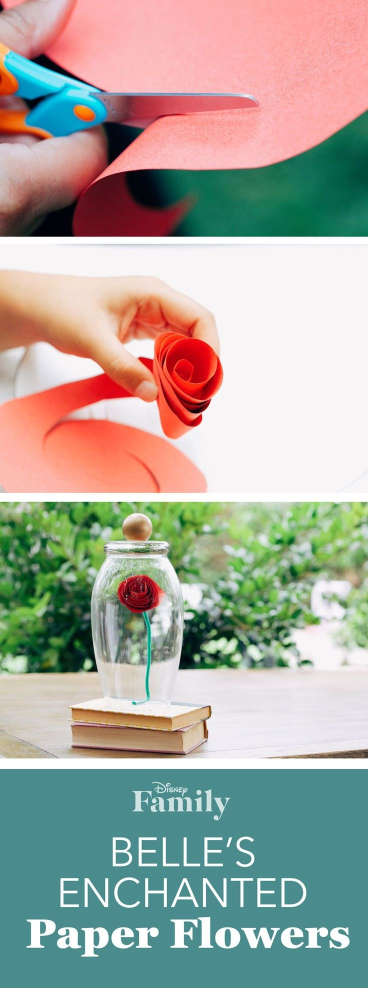 Rosa encantada... La bella y la Bestia