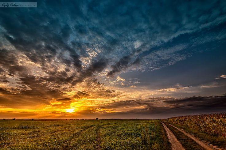 A cél sokszor maga az út, de csak ha nem céltalan; s minden célból, ha valóban cél volt, mindig új út vezet tovább.  Fadd