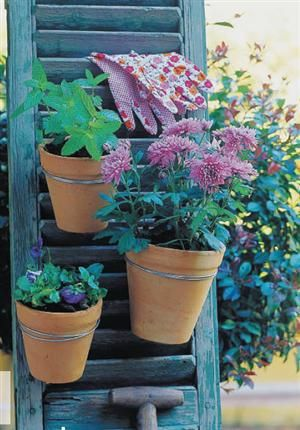 Another idea for repurposed shutter to put with repurposed door/shutter potting table and shed! In the garden. Terracotta pots hung with wire and S-hooks