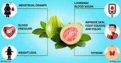 Guava can help improve your heart health, lower your blood sugar, prevent cancer cell growth and more. Discover the many benefits of this exotic fruit. http://articles.mercola.com/sites/articles/archive/2016/11/14/guava-benefits.aspx