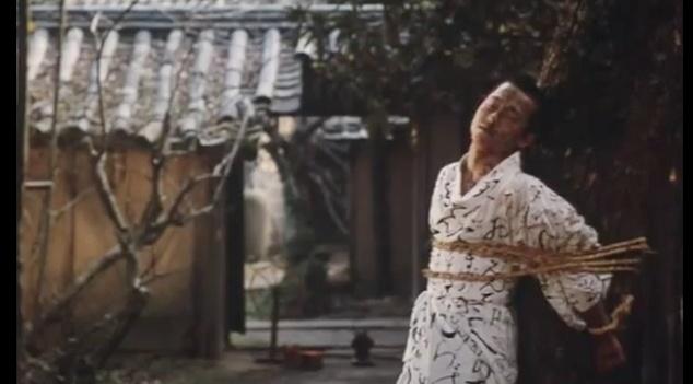 Grass Labyrinth (1979) dir: Shuji Terayama