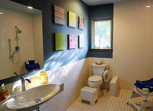 52 Best Images About Universal Design Bathrooms On Pinterest