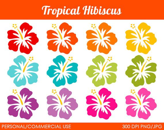 Hey, I found this really awesome Etsy listing at http://www.etsy.com/listing/102290882/tropical-hibiscus-clipart-digital-clip