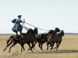 """Hortobagy, Hungary  The Hungarian """"cowboys"""" are amazing horseman. I have seen this in person."""