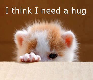 I think I need a hug