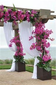 Patios Decor For Wedding, Backyards Porches Patios Decks, Wedding Ideas, Decor Wedding Arches, Gardens Wedding, Patios Flower Ideas, Outdoor Wedding Ceremonies, Destinations Wedding, Bougainvillea Pergolas