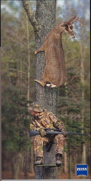 Always think of this pic after an hour in my stand!!  Lol