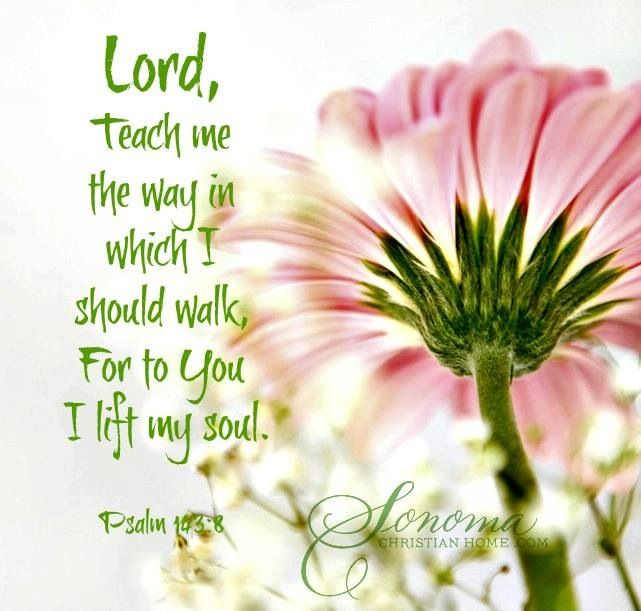 1426 best my sweet lord images on pinterest bible quotes bible psalm lord teach me the way in which i should walk for to you i lift up my soul negle Image collections