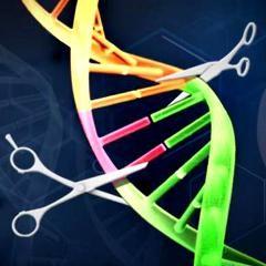 Sida : traitement curatif grâce aux « ciseaux génétiques » CRISPR-Cas9 chez la souris