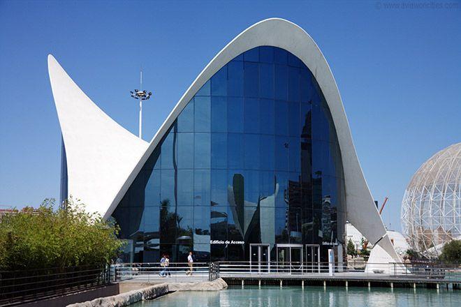 Oceanogràfic in Valencia