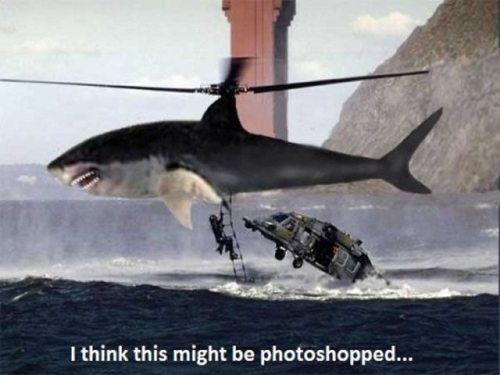 photoshop fail 37 Photoshop Fail 3 retouche photoshop photo image fail