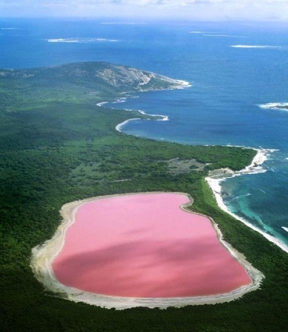 Hiller Lake - Western Australia  It's an actual pink lake!!