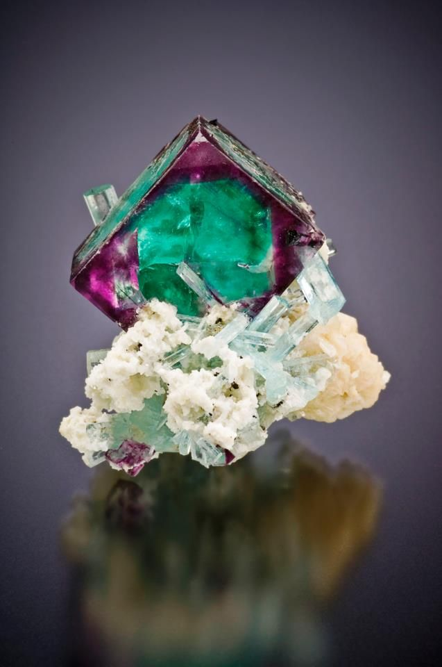 Fluorite with aquamarine from Erongo Mtns, Namibia. Photo by Jeff Scovil. / Mineral Friends <3