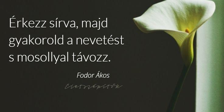 Ma lenne 71 éves Fodor Ákos költő, műfordító. Képes idézetgyűjtemény szómíves érzelmiségieknek | Életszépítők