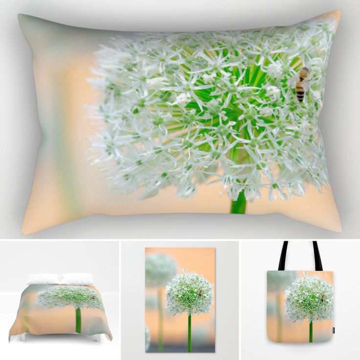 20% off on pillows today https://society6.com/product/great-star-flower_rectangular-pillow?#s6-7133522p50a66v444#pillows #s6 #society6 #society6art #prints #flowers #flowerstagram #flowersshop #shopping #today #weekenshopping #blumen #pattern #muster #fineart #nature #naturephotography #blumenmuster #hintergrund #background #interior #interiordesign #homewares