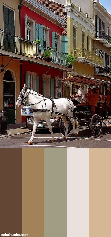 198 best images about color schemes on pinterest colour New orleans paint colors