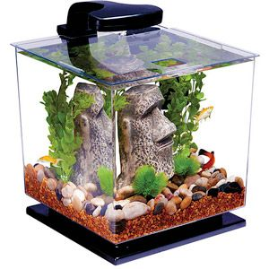 Tetra LED Cube 3-Gallon Aquarium