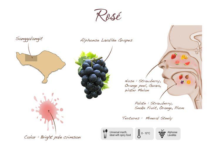 Rose, visual presentation