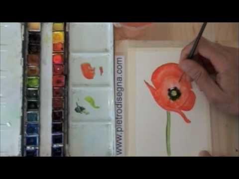 Corso di pittura ad acquerello gratis on line Papavero con Pietro Disegna www.corsodipittura.com - YouTube