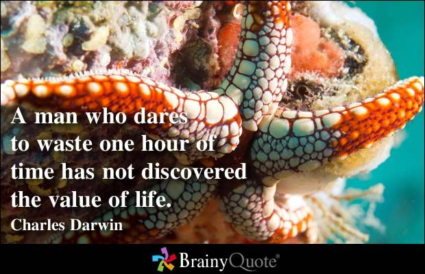 A man who dares to waste one hour of time has not discovered the value of life. - Charles Darwin