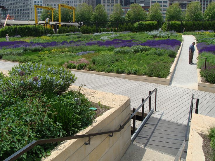 20 best images about lurie garden millenium park on for Landscape design chicago