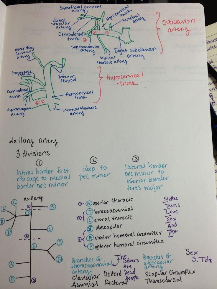 Branches of medical science - gkduniya.com