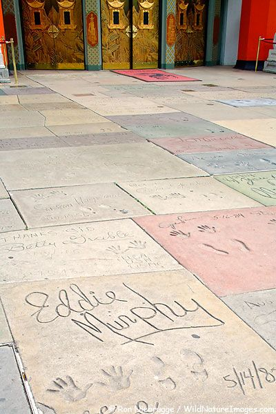 The footprints of some of Hollywood's biggest stars can be see in the forecourt to Grauman's Chinese Theatre located on Hollywood Boulevard, Hollywood, California