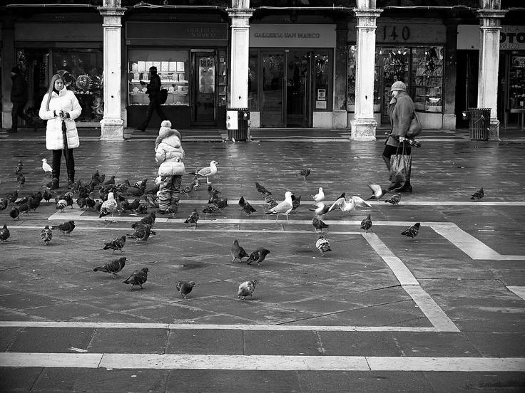 holubník na San Marcu