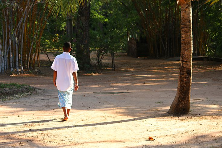 At One with the Wild Things of Madagascar | Anjajavy le Lodge