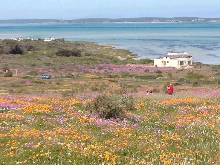 Langebaan |Pinned from PinTo for iPad|