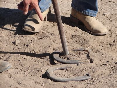 click for horseshoe tossing game rules