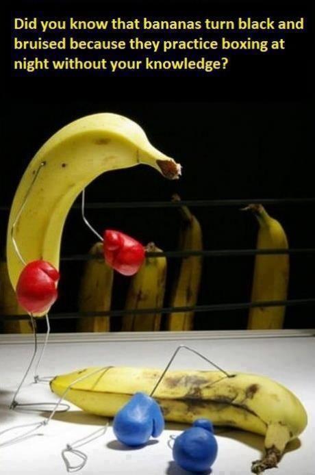 Bananas turn black