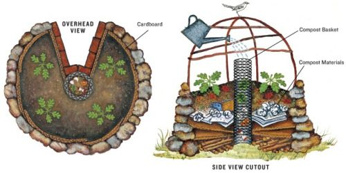 "Keyhole Gardening: a Drought-Tolerant, Compost-Style, Sustainable Concept  The key hole garden concept is quite simple. A circular planting bed (with a ""keyhole"" to allow access to the center) is constructed with bricks, stone, gabion-style walls, or even aluminum siding. In the center of the keyhole is a circular compost bin in which kitchen scraps and household ""gray water"" are poured.  Layers of soil inside the circular walls slope slightly outward to encourage pos..."