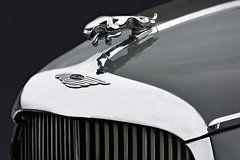 Jaguar MK IX Hood  by Susan Candelario