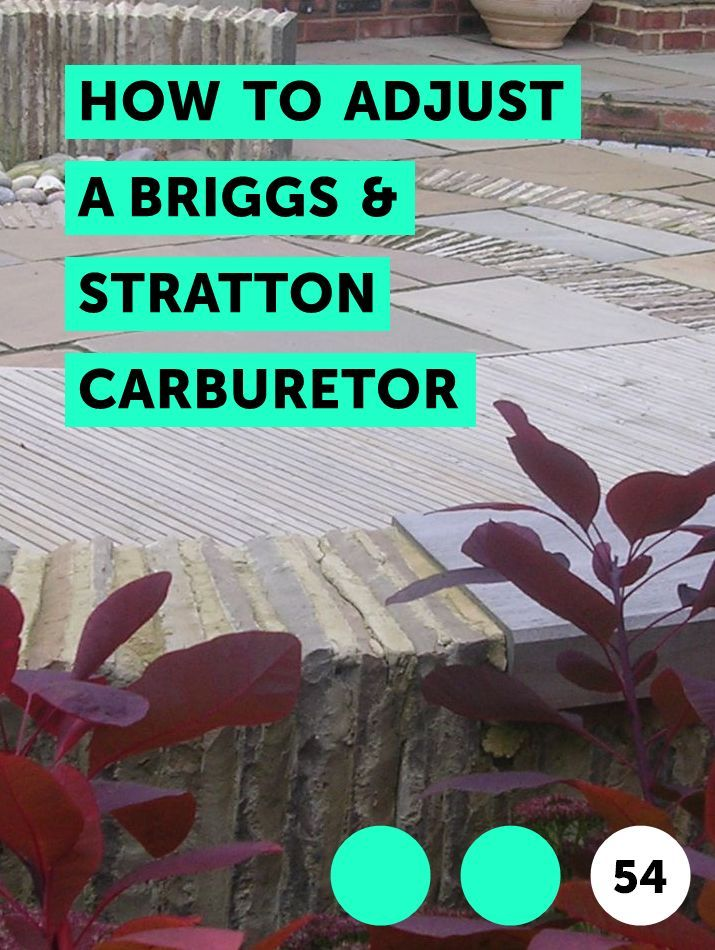 How To Adjust A Briggs Stratton Carburetor Rhododendron Care Growing Flowers Plant Leaves