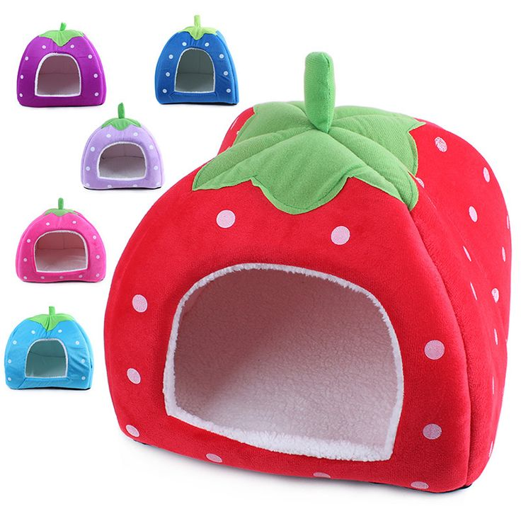 Pet Dog Bed Mats dog house classic Strawberry warm nest Dog Supplies Pet Products Accessories Gear Items Stuff // FREE Shipping //     Buy one here---> https://thepetscastle.com/pet-dog-bed-mats-dog-house-classic-strawberry-warm-nest-dog-supplies-pet-products-accessories-gear-items-stuff/    #cat #cats #kitten #kitty #kittens #animal #animals #ilovemycat #catoftheday #lovecats #furry  #sleeping #lovekittens #adorable #catlover