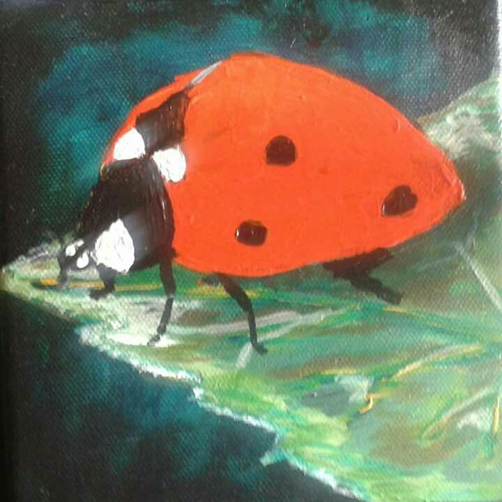 Ladybird series 4