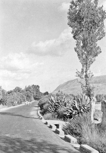 Οδός Σούδας. Χανιά, 1949 Περικλής Παπαχατζιδάκης - Μουσείο Μπενάκη