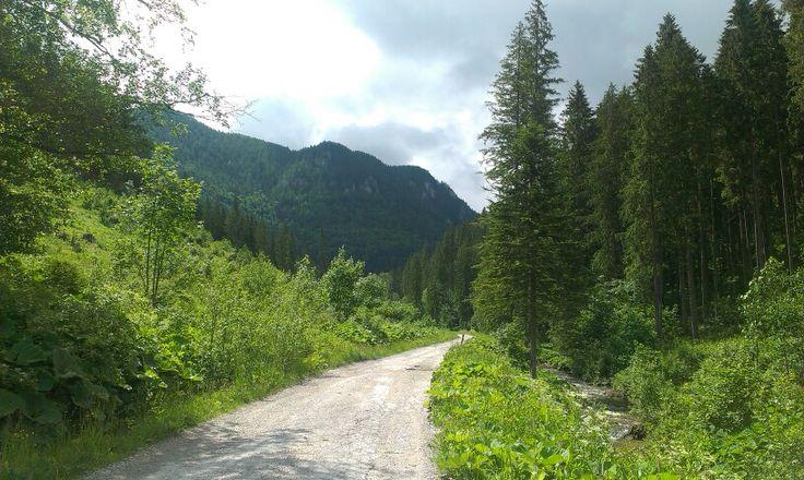 Cestou na Stožky
