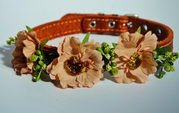 Dog Collar Ward Etsy
