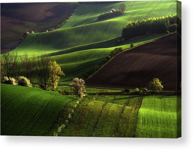 Between Green Waves Acrylic Print by Jenny Rainbow.  All acrylic prints are professionally printed, packaged, and shipped within 3 - 4 business days and delivered ready-to-hang on your wall. Choose from multiple sizes and mounting options.