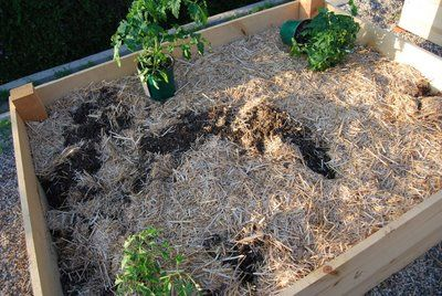 23 best raised garden beds images on pinterest vegetable garden backyard ideas and 3 4 beds for How to fill a raised garden bed