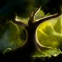 Fantasy Tree #redrawkeyboard Wallpaper